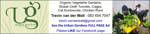 Urban Gardens